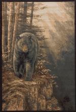 Rocky Mountain Black Bear Rugs