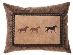 Mustang Canyon Alternate Pillow