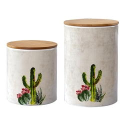 Desert Cactus Canisters