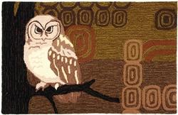 Retro Owl Hooked Rug -22