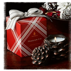 Frasier Fir Pinecone Poured Candle - 4.25 oz.