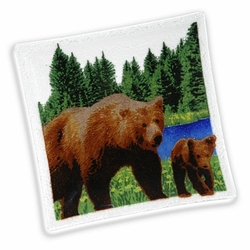 Bear Square Tray - 10
