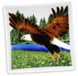 American Wildlife Eagle - 10