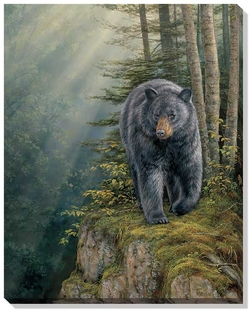 Black Bear Mountain Canvas Picture