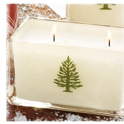 Frasier Fir 2-Wick Poured Candle