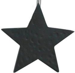 Star Shower Curtain Hook - Black