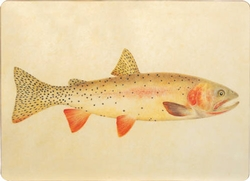 Trout Placemat - Set of 4