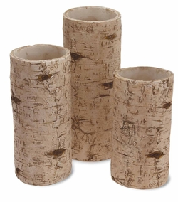 Birch Pillars - 3 Sizes