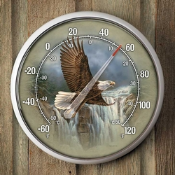 Majestic Flight - Bald Eagle Thermometer