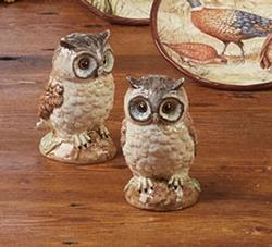 Rustic Nature 3-D Owl Salt and Pepper Set
