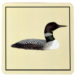 Loon Coasters - Set of 4